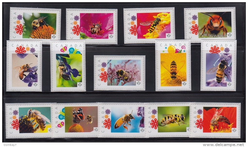 HONEYBEE, BEE, WASP, INSECTS Set Of 35 Picture Postage MNH Stamps Canada 2012-16 - Honeybees