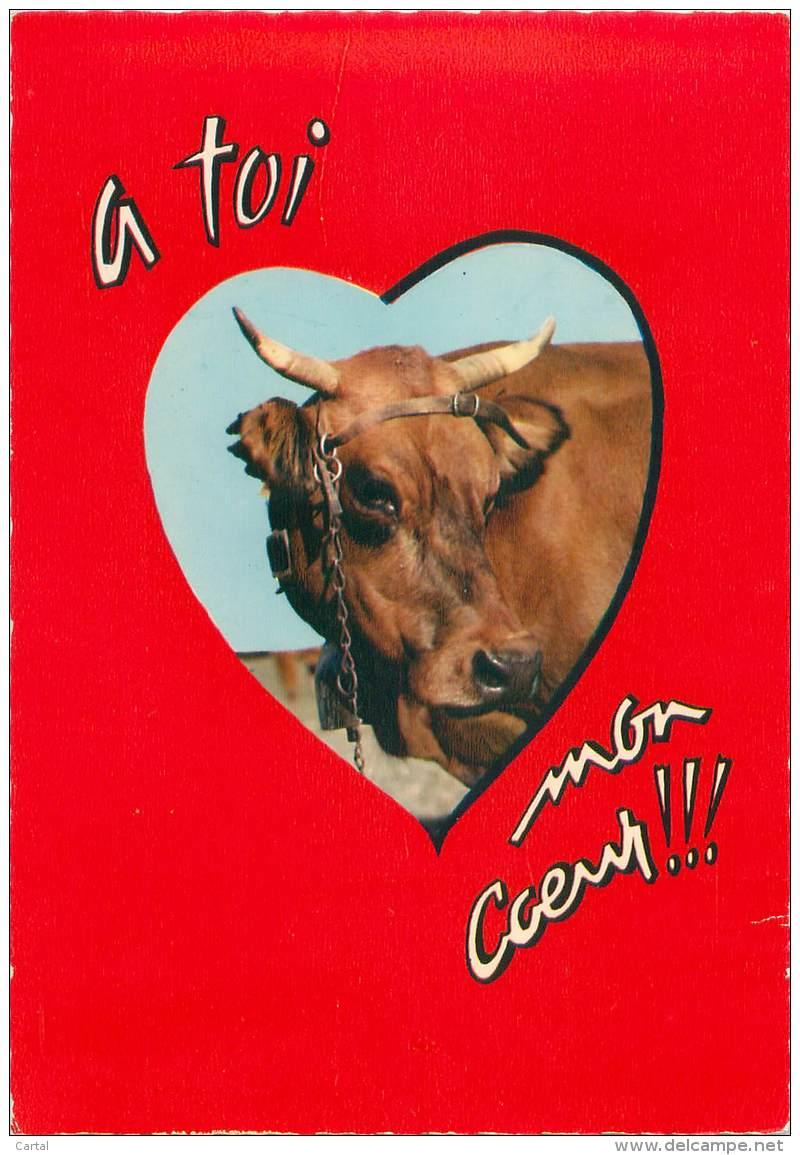 CPM - Taureau - A Toi Mon Coeur !!! - Stieren