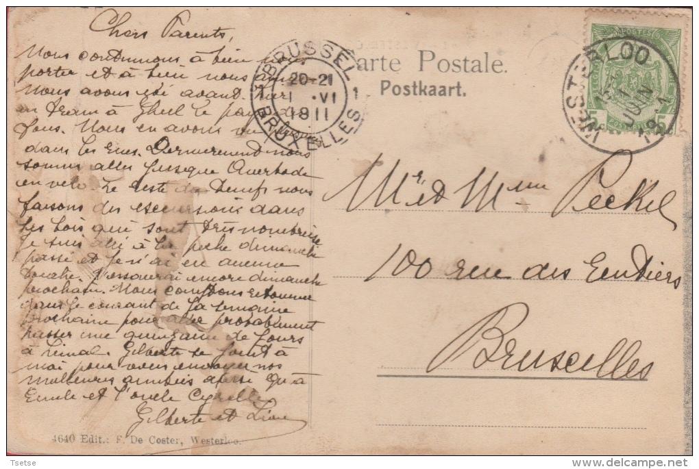 Westerlo - Rond - Grote Nethe , Laak ??? - Booten  -1911  ( Verso Zien ) - Westerlo