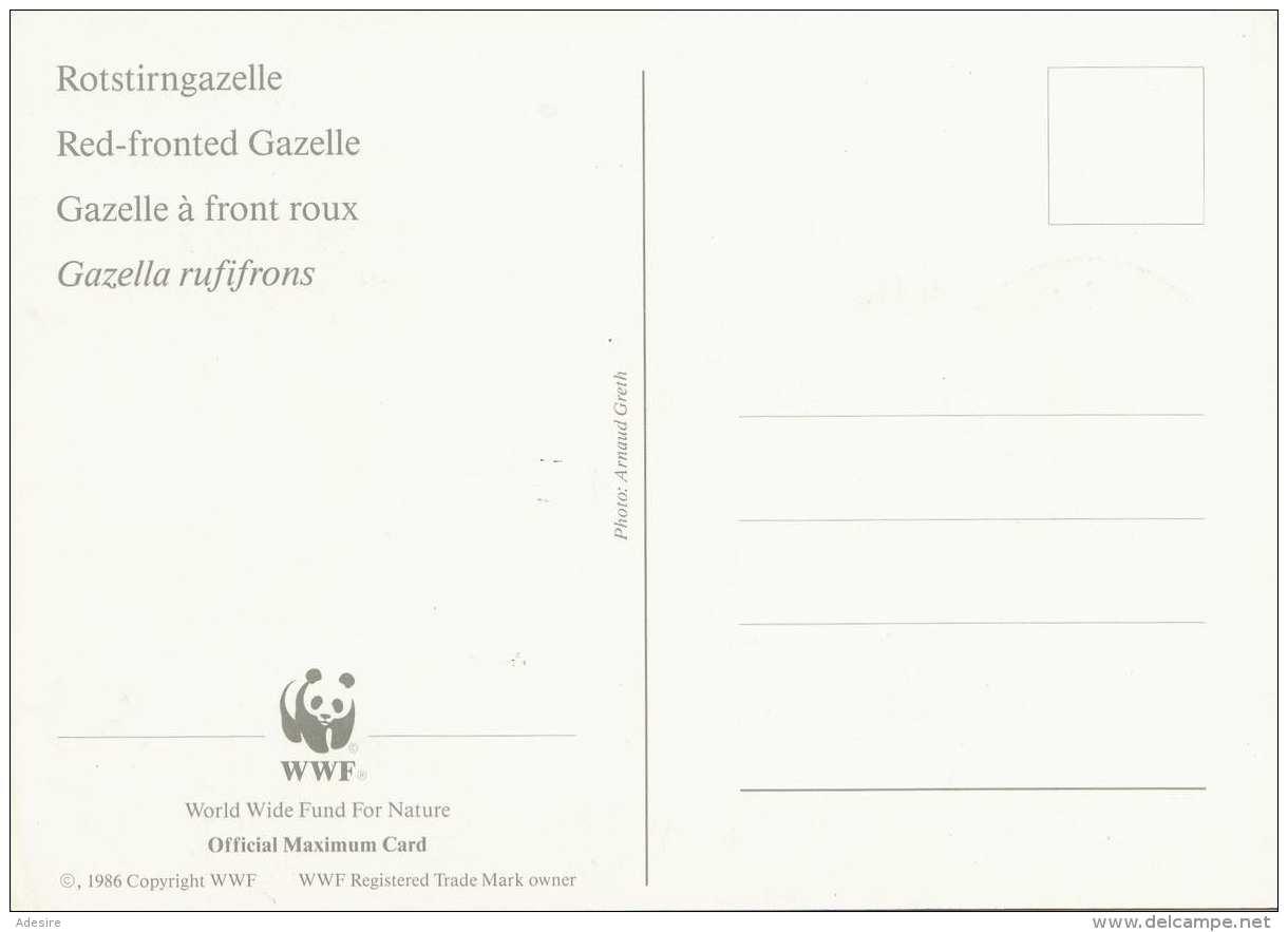 BURKINA FASO (Westafrika) - 60 F Sondermarke Auf Maximumkarte Rotstirngazelle WWF - Burkina Faso