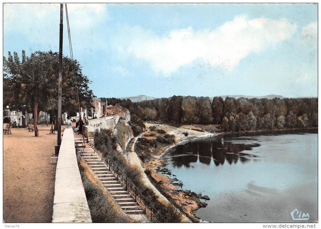 CPSM - TONNEINS - Promenade Au Bord De La Garonne - Tonneins