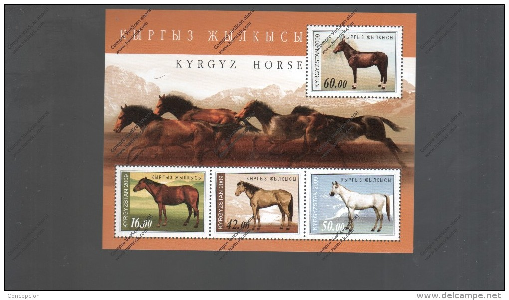 KIRGHIZSTAV Nº HB  41 - Pferde