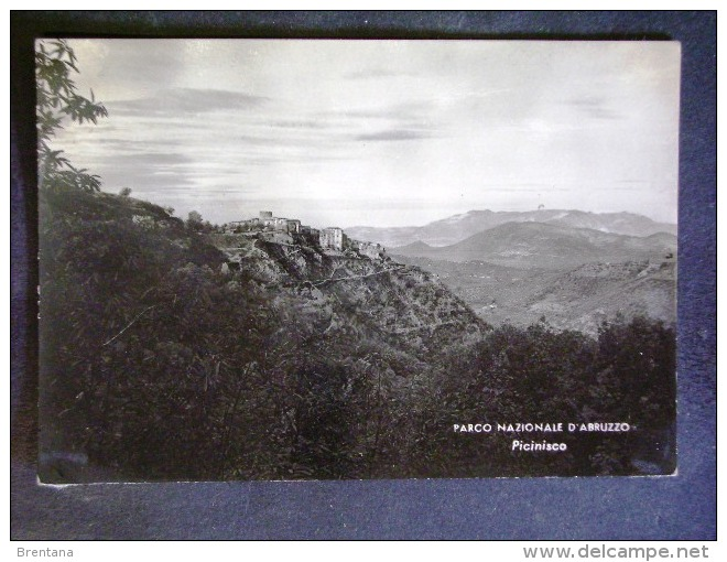 LAZIO -FROSINONE -PICINISCO -F.G. LOTTO N°549 - Frosinone