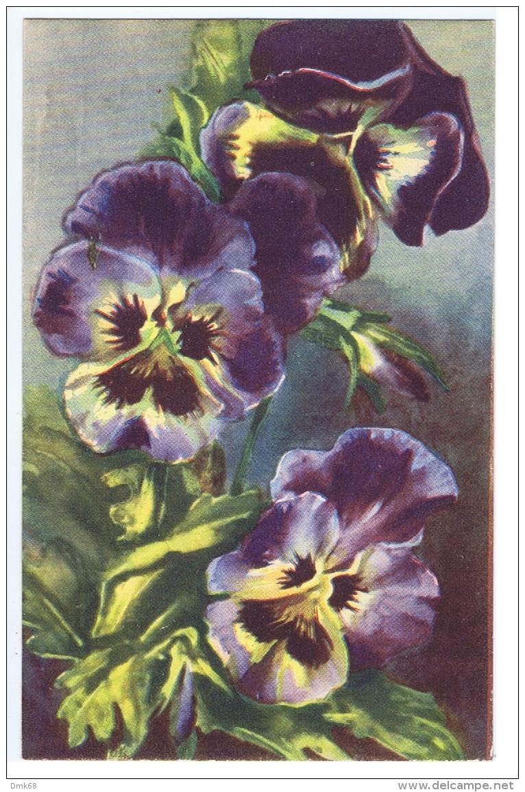 CHIOSTRI  - EDIT BALLERINI & FRATINI 1930s/40s - FLOWER - PANSY - N.9017 ( A ) - Chiostri, Carlo