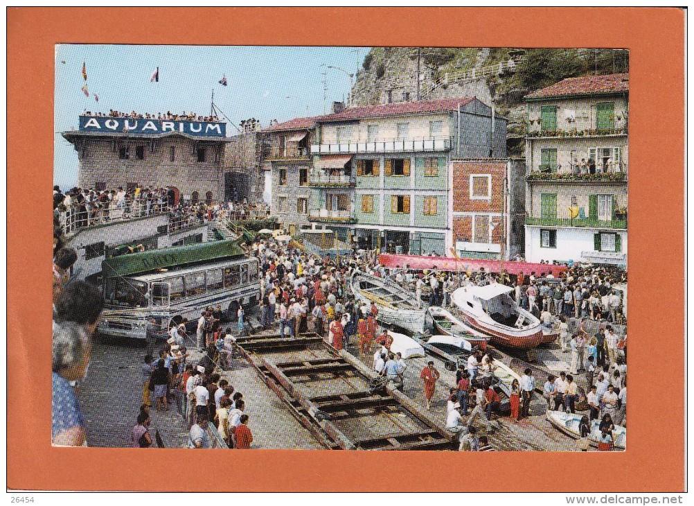 SAN DEBASTIAN     Port En Jour De Regates     TRES  ANIMEE    Non Ecrite  Num 102    CPM - Espagne