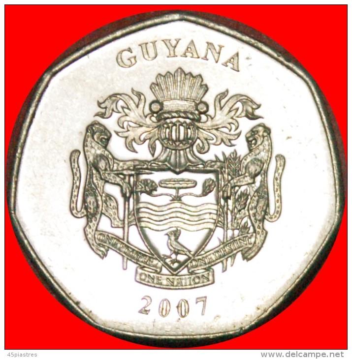 § GREAT BRITAIN: GUYANA ★ GOLD HEPTAGONAL 10 DOLLARS 2007 MINT LUSTER! LOW START ★ NO RESERVE! - Guyana