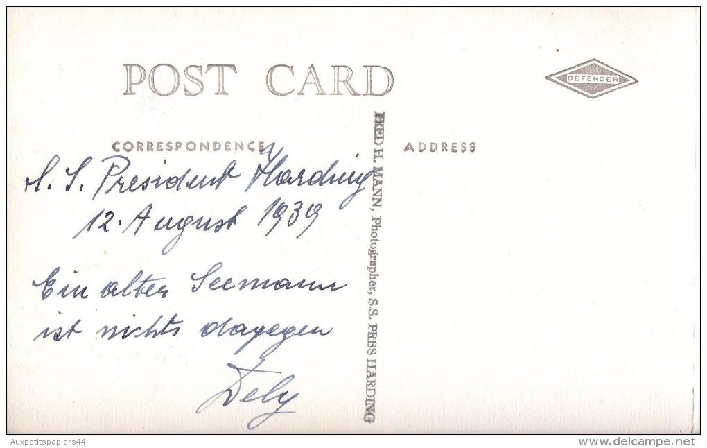 Carte Photo Originale Femme - Photo Dédicacée Par Tely ( Portrait ) à M.S President Harduig - Le 12.08.1939 - - Pin-Ups