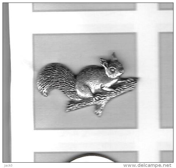 Pin´s  Argenté  Animal  ECUREUIL  Verso  A R  BROWN, POWTER - Animaux