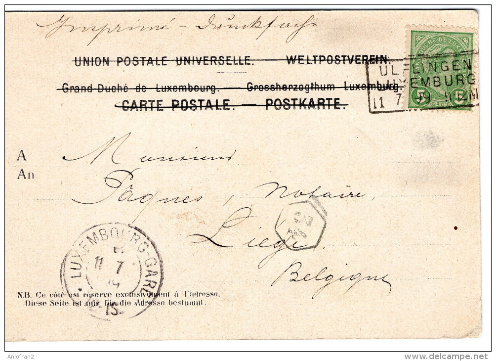 SALUT DE LAROCHETTE, HOTEL GINTER, CHATEAU DE MEYSENBOURG,VALLEE DE MULLERTHAL, 1899 - Larochette