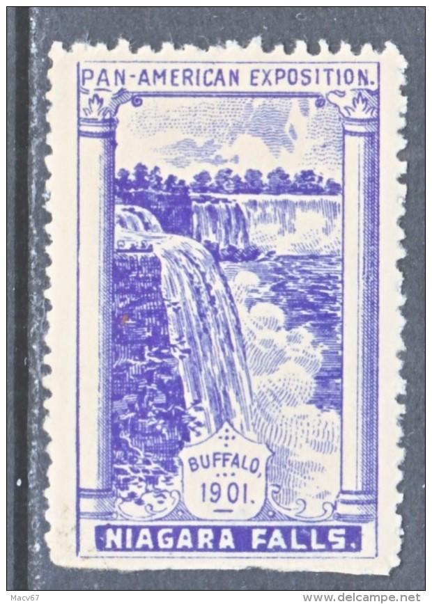 PAN-AMERICAN  EXPO. VIGNETTE   1901  BUFFALO, N.Y.    *  NIAGARA  FALLS - Universal Expositions