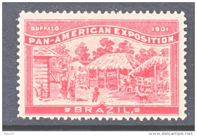 PAN-AMERICAN  EXPO. VIGNETTE   1901  BUFFALO, N.Y.    *  BRAZIL - Universal Expositions