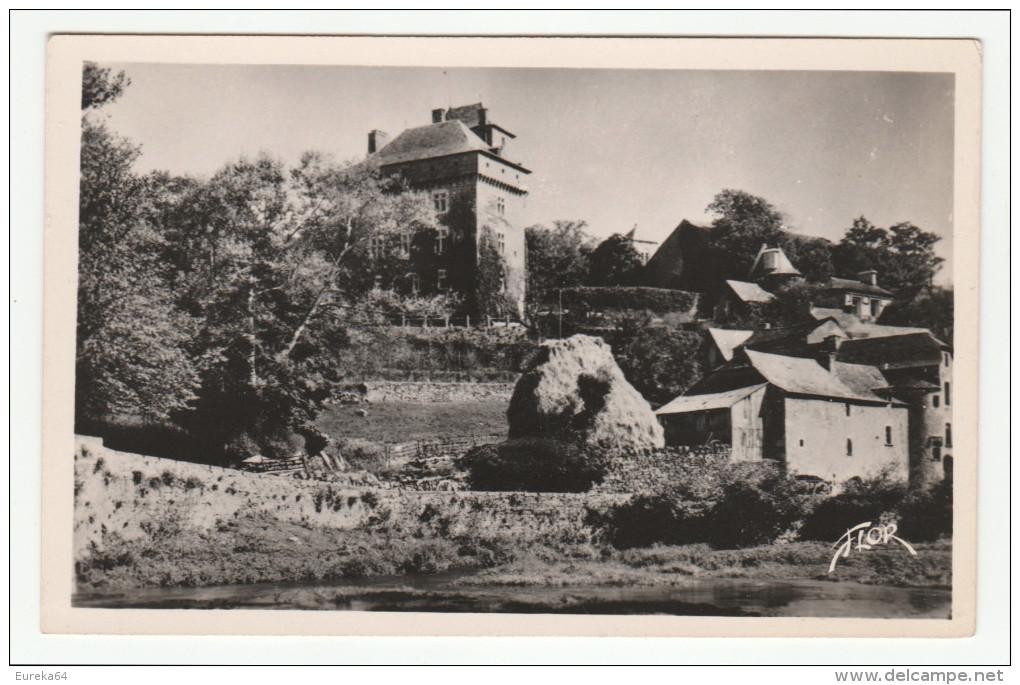 MONTROZIER - Le Château Et Les Rives De L'Aveyron - édit. FLOR, N°4521 - Format CPA - France