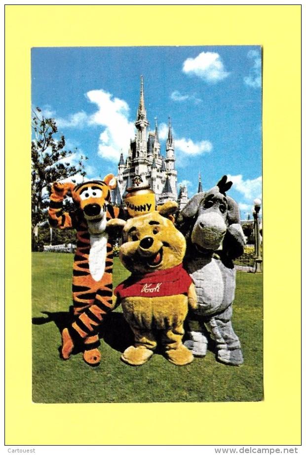 CPSM Florida Walt Disney World Fantasyland A Hunny Of A Place 1979 - Disneyland