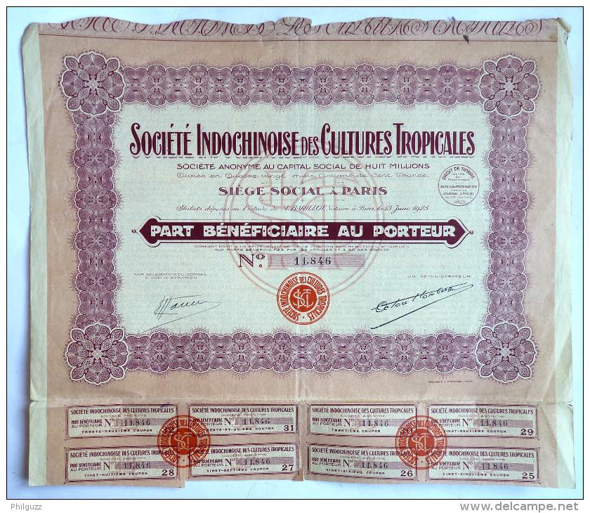 ACTION SOCIETE INDOCHINOISE DES CULTURES TROPICALES  - 1925 TITRE 121428 - Asie