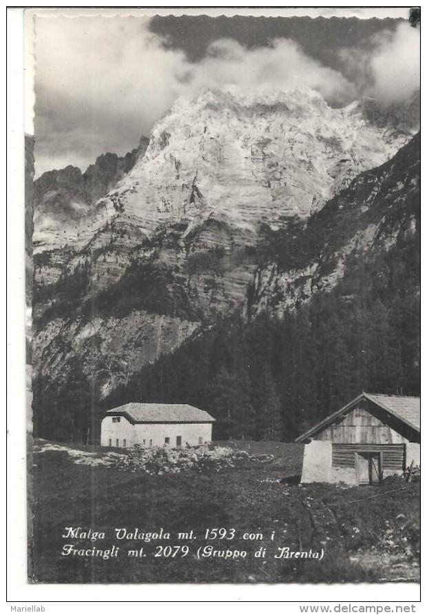 VIGO LOMASO,MLAGA VALAGOLA. .VIAGGIATA .. 1957.FG.G3.M - Trento