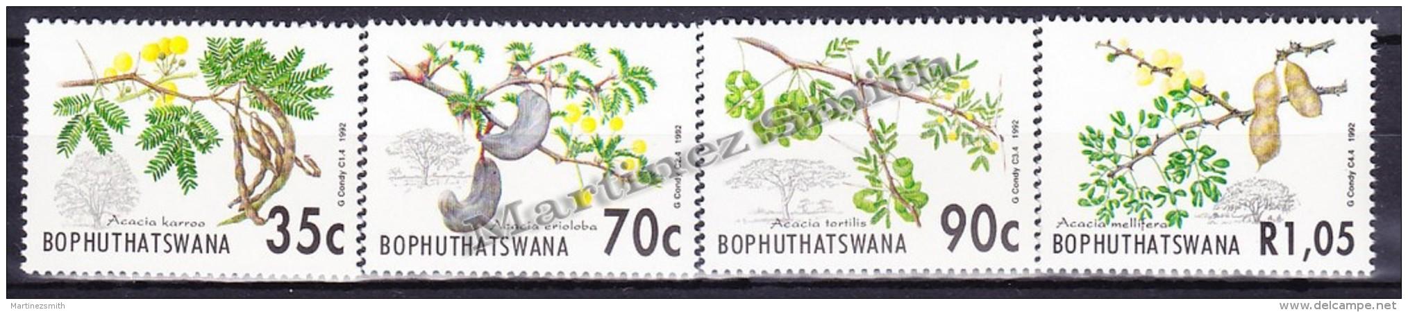 South Africa - Afrique Du Sud - Bophuthatswana 1992 Yvert 281 - 84, Flowers, Acacia - MNH - Ungebraucht