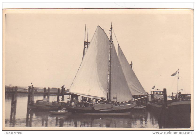 25853 Carte Photo Belgique Anvers ?  -bateau Yatch  Voilier Port - Daté 1943 -N° D55 PIKI - Voiliers