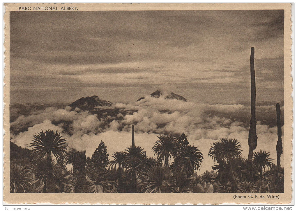 CPA - AK Rwanda Ruanda Parc National Albert Volcans Volcan Visoke Sabinyo Gahinga Muhabura Congo Belge Kongo Afrique - Rwanda