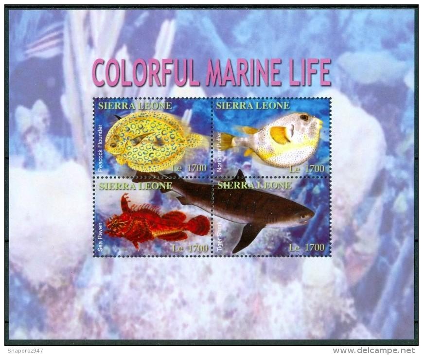 2004 Sierra Leone Vita Marina Marine Life Pesci Fishes Fische Poissons Set + Block MNH** Sie13 - Kampuchea