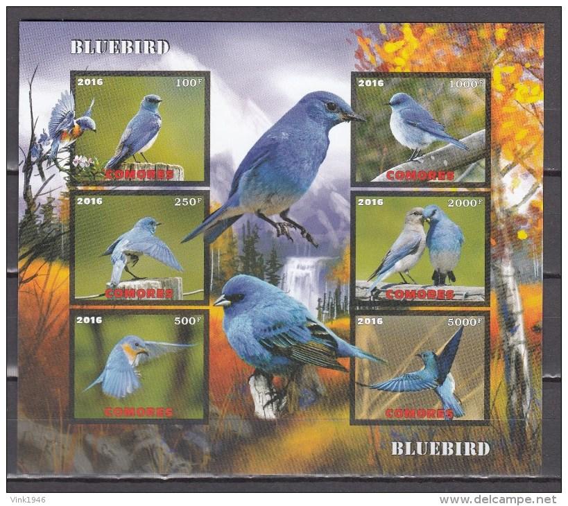 Comores 2016,6V In Block,IMP,bleubird,birds,vogels,vögel,oiseaux,pajaros,uccelli,aves,MNH/Postfris(L2912) - Oiseaux