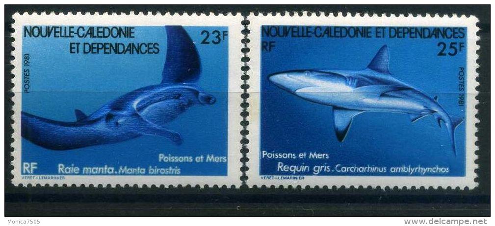 NOUVELLE-CALEDONIE  ( POSTE ) : Y&T  N°  443/444  TIMBRES  NEUFS  SANS  TRACE  DE  CHARNIERE , A  VOIR . - New Caledonia