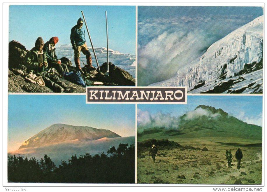 TANZANIA - KILIMANJARO, PEAK OF AFRICA / THEMATIC STAMP-ANIMAL (WILD DOG) - Tanzania