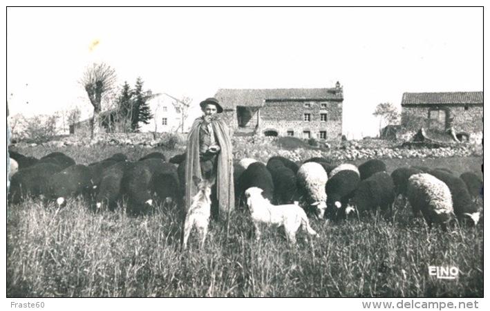 # Scènes Champêtres De La France Centrale ( Le Puy En Velay ?) - Le Berger Du Village - France