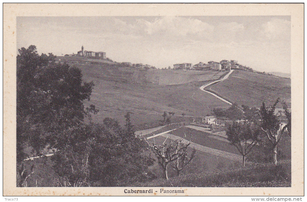 CABERNARDI  /  Panorama _ Edit. TOGNIONI Giuseppe - Ancona