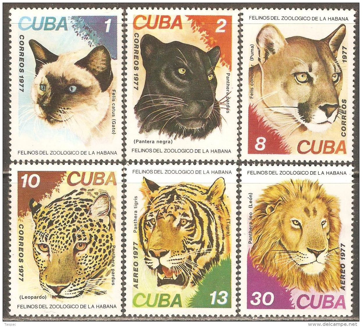 1977 Mi# 2257-2262 ** MNH - Felines - Big Cats (cats Of Prey)