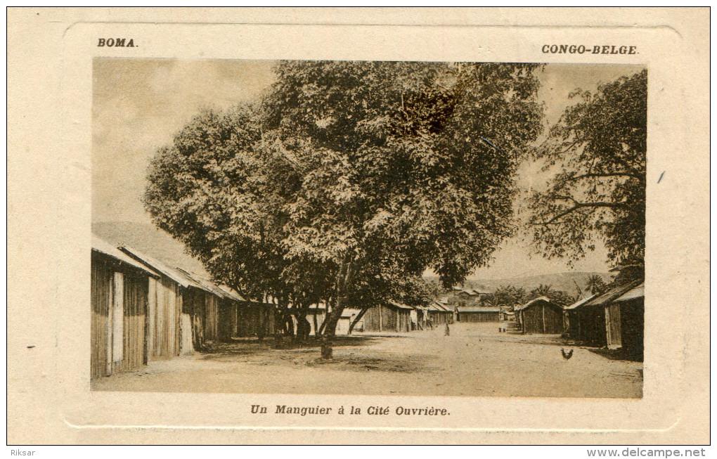 CONGO BELGE(BOMA) ARBRE(MANGUIER) - Congo Belga - Otros