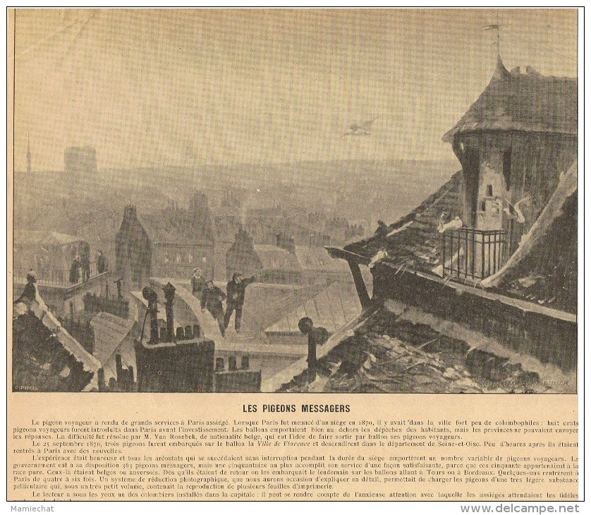 PHOTOS RECTO/VERSO-RECTO:LES PIGEONS MESSAGERS EN 1870-VERSO:PONT DU MOULIN DE CRETEIL 1870- - Old Paper