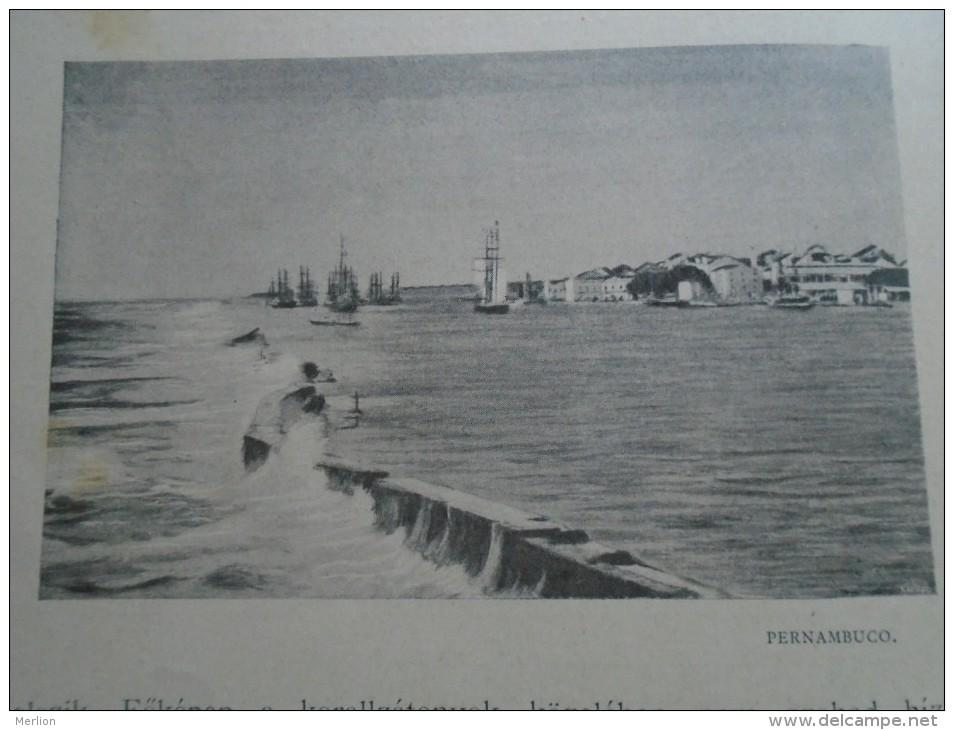 D143011.194   AFK - Brasil  -Pernambuco -   Old Print Ca 1900  Hungarian Travel Book - Estampes & Gravures