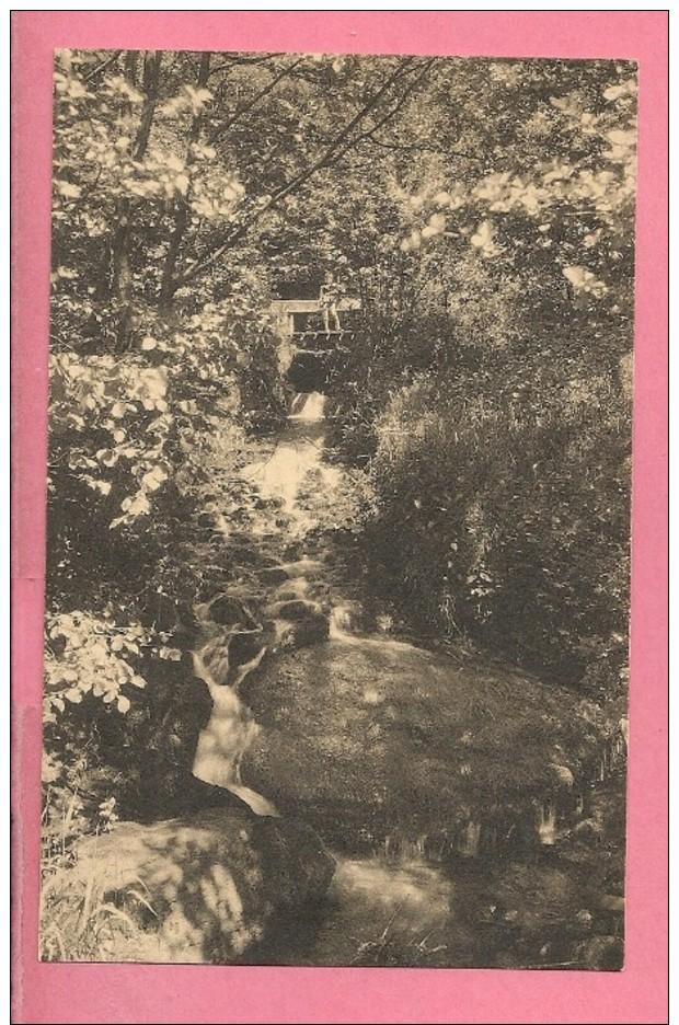 C.P   Smuid  ;  La  Cascade   Du  Daimon - Libin