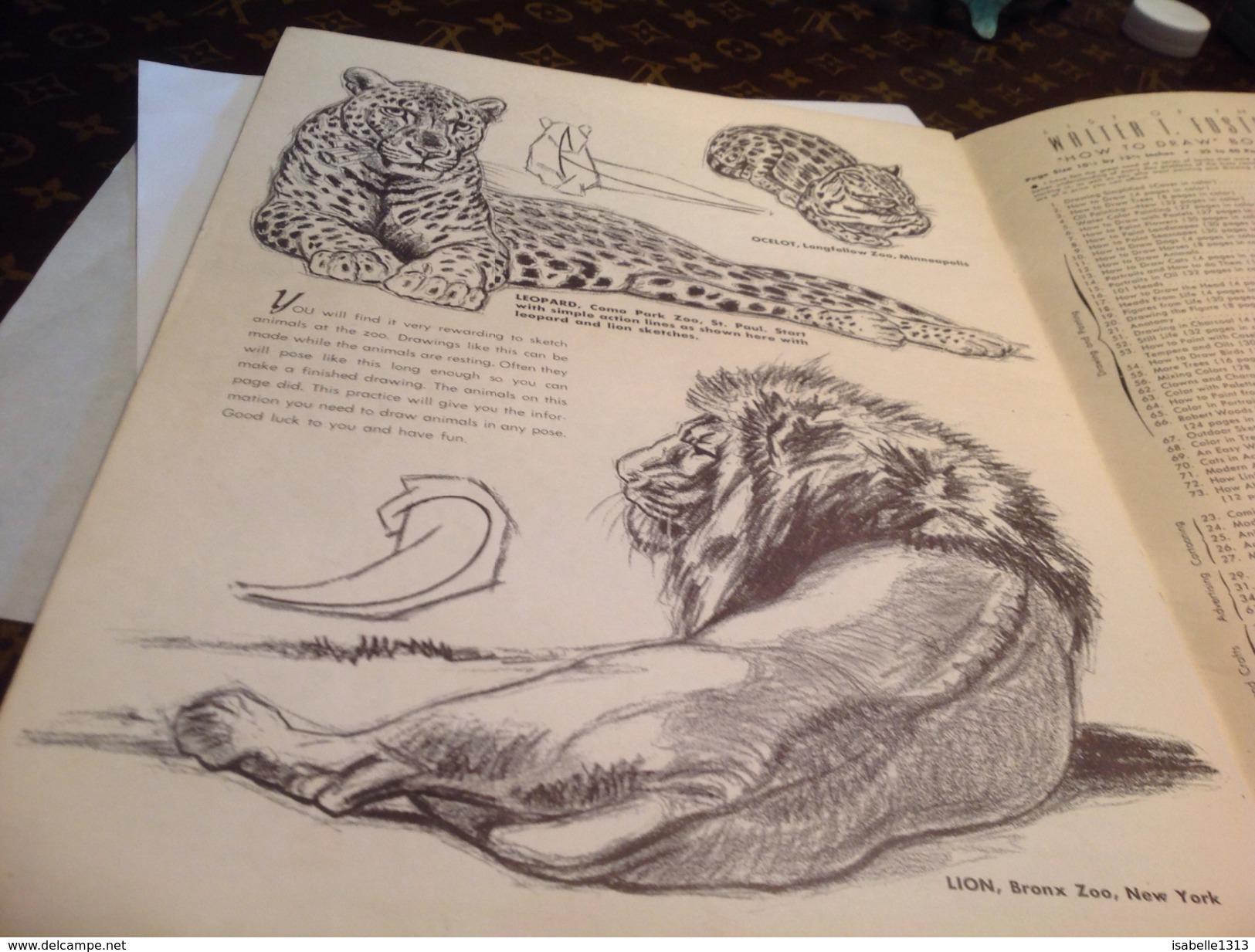 The Cat On Action Walter By Wilwerding Lion Panthère Léopard Chat Tiger  Dessin Puma Lionne - Livres, BD, Revues