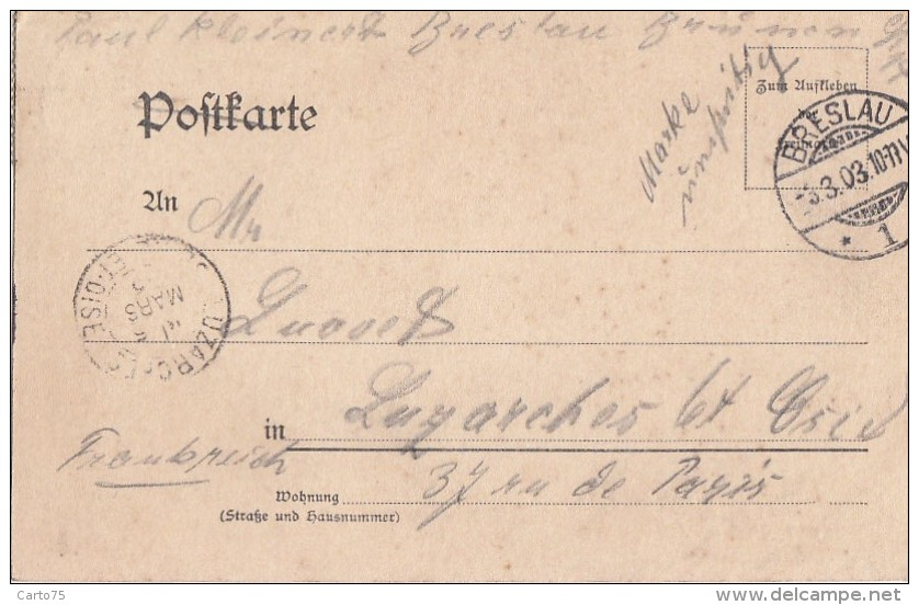 Pologne - Gruss Aus Breslau - WrocÅ'ow - Blick Von Der Liebichshöhe - Postmarked 1903 - Pologne