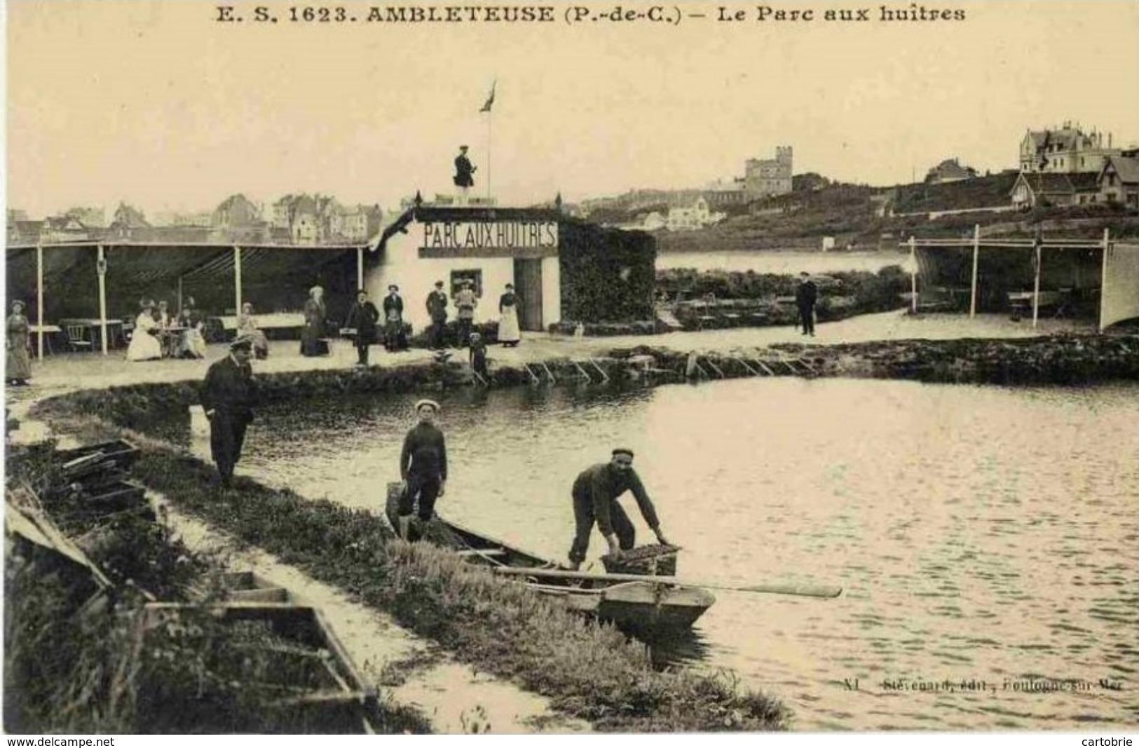 62 AMBLETEUSE - Le Parc Aux Huîtres - Très Animée - France