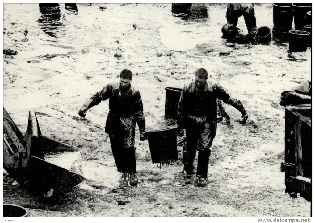 22 - SAINT-GUIRIEC - Marée Noire Du Tanio - 1980 - Pollution - - France