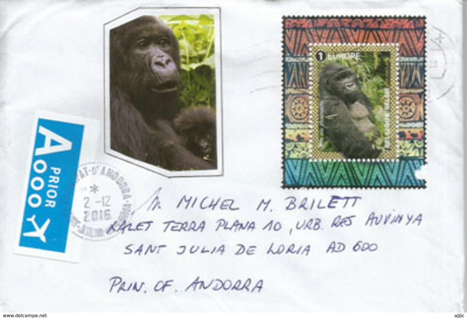 Sauvetage Des Gorilles, Belle Lettre Adressée ANDORRA, Avec Timbre à Date Arrivée - Gorilles