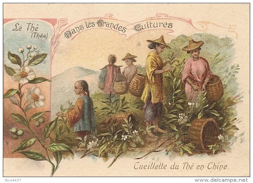 Chromo Cueillette Du The En Chine - Thé & Café