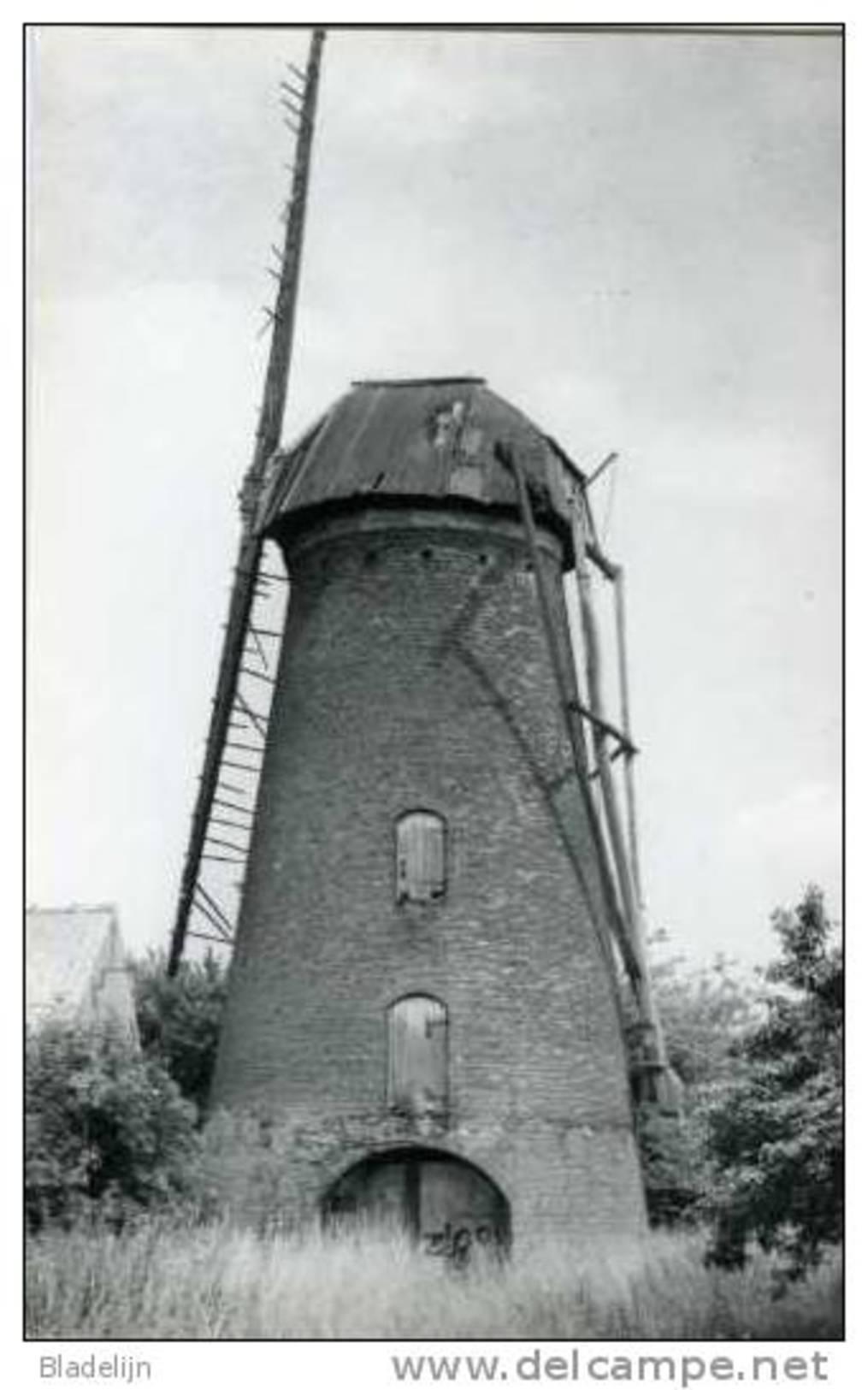 BERENDRECHT (Prov. Antwerpen) - Molen/moulin - De Buitenmolen In Verval Met Twee Wieken Voor De Restauratie (1987) - Antwerpen