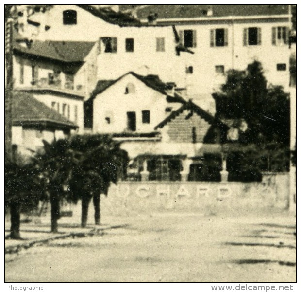 Suisse Lac Majeur Locarno Panorama Ancienne Photo Stereo NPG 1900 - Stereoscopic