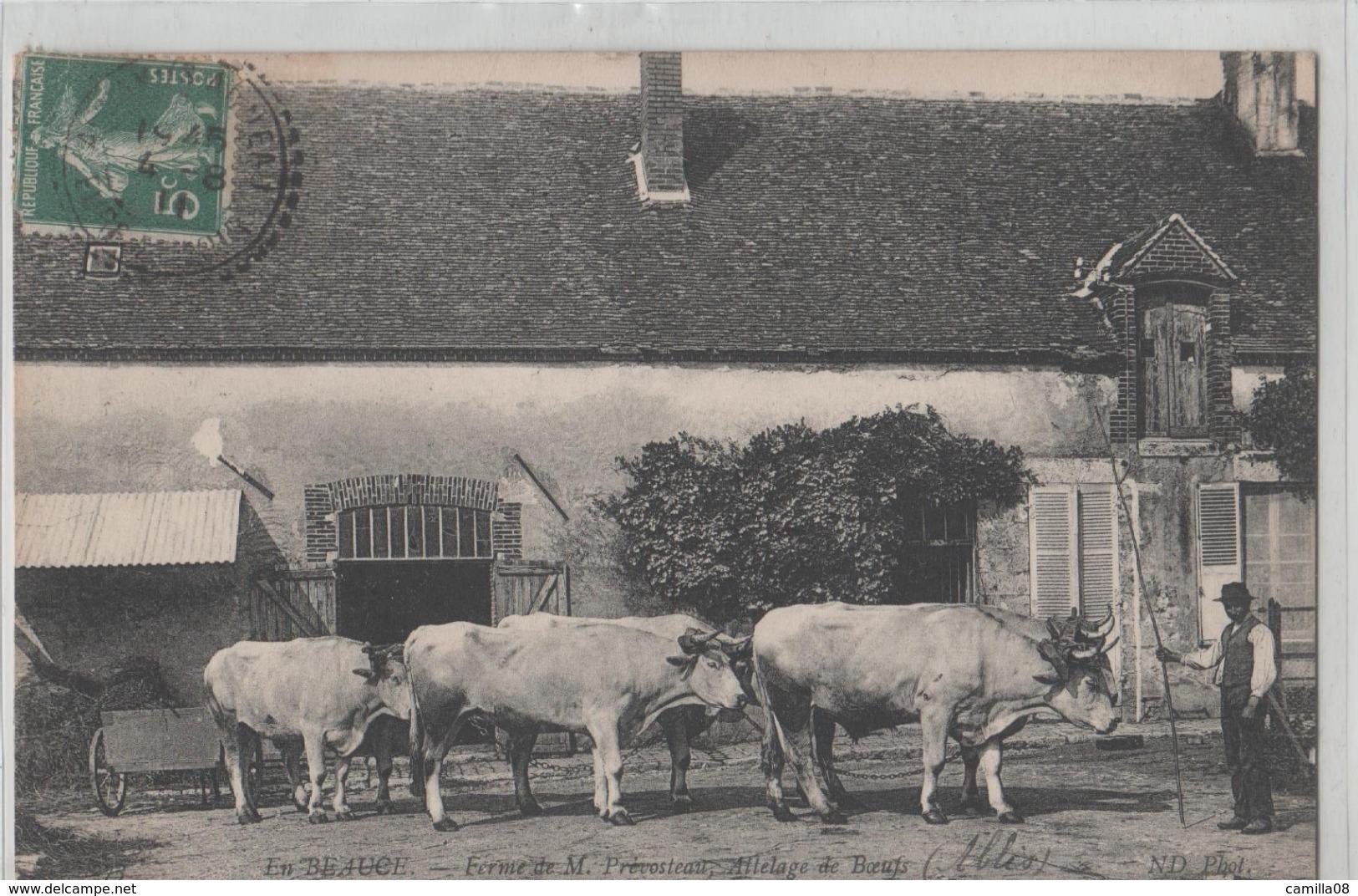 EN BEAUCE.FERME DE PREVOSTEAU.ABLIS .ATTELAGE DE BOEUFS - Farmers