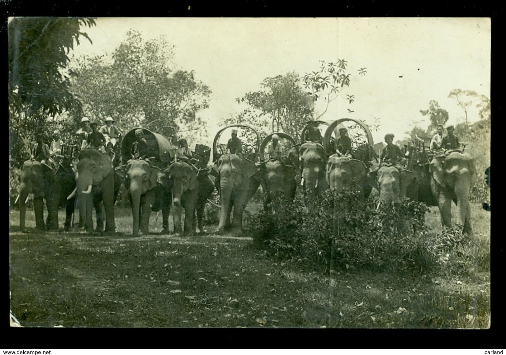 Indonesia  Indonesië   Olifanten  Olifant  éléphant  - Carte Photo  Fotokaart - Indonesia