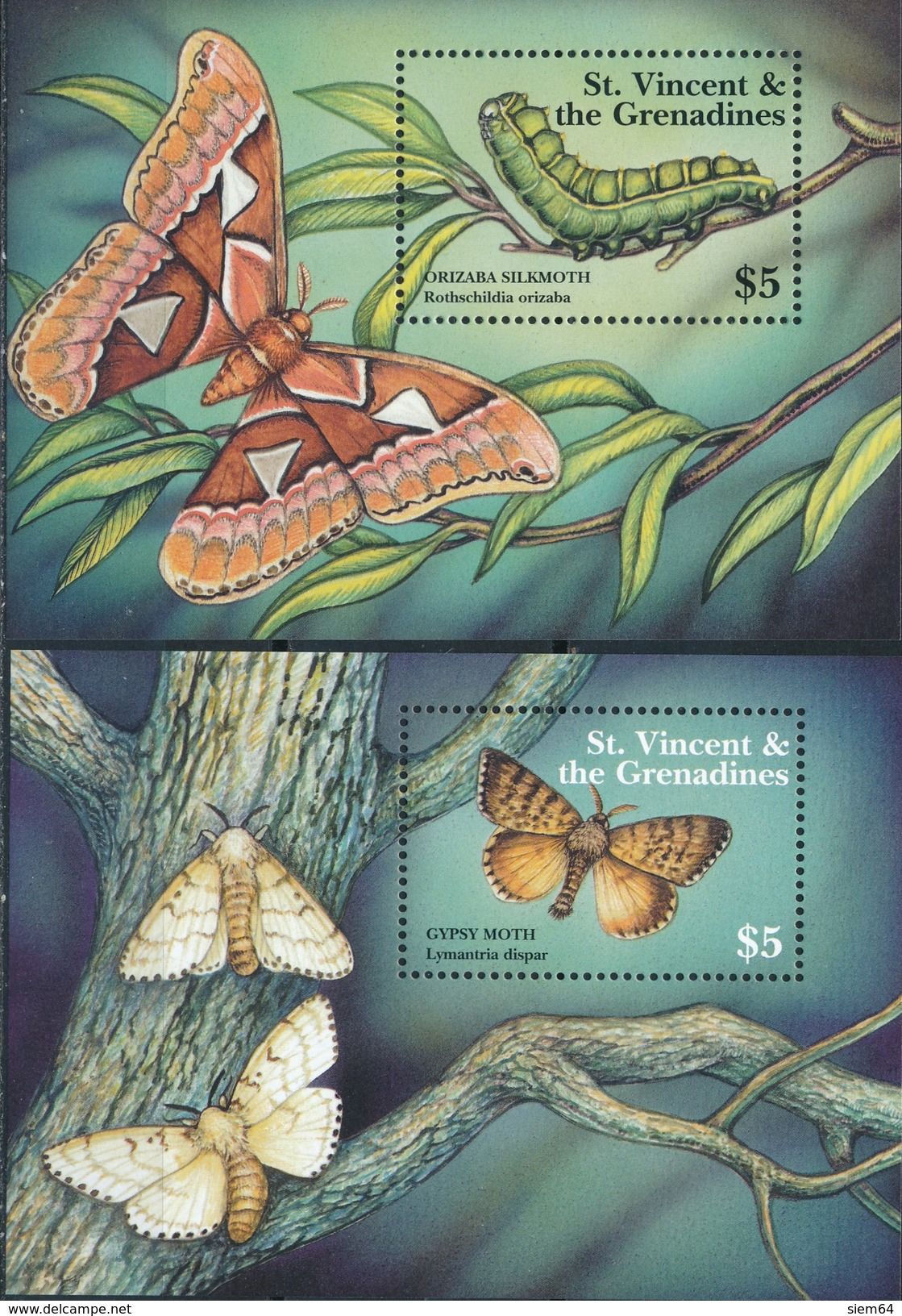 St.Vincent  Butterflies - Vlinders