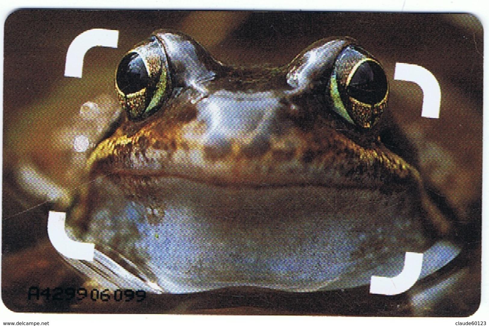 Télécarte Des Compagnies De Téléphone Pays-Bas ( Voir Le Scan ) - Telefonkarten