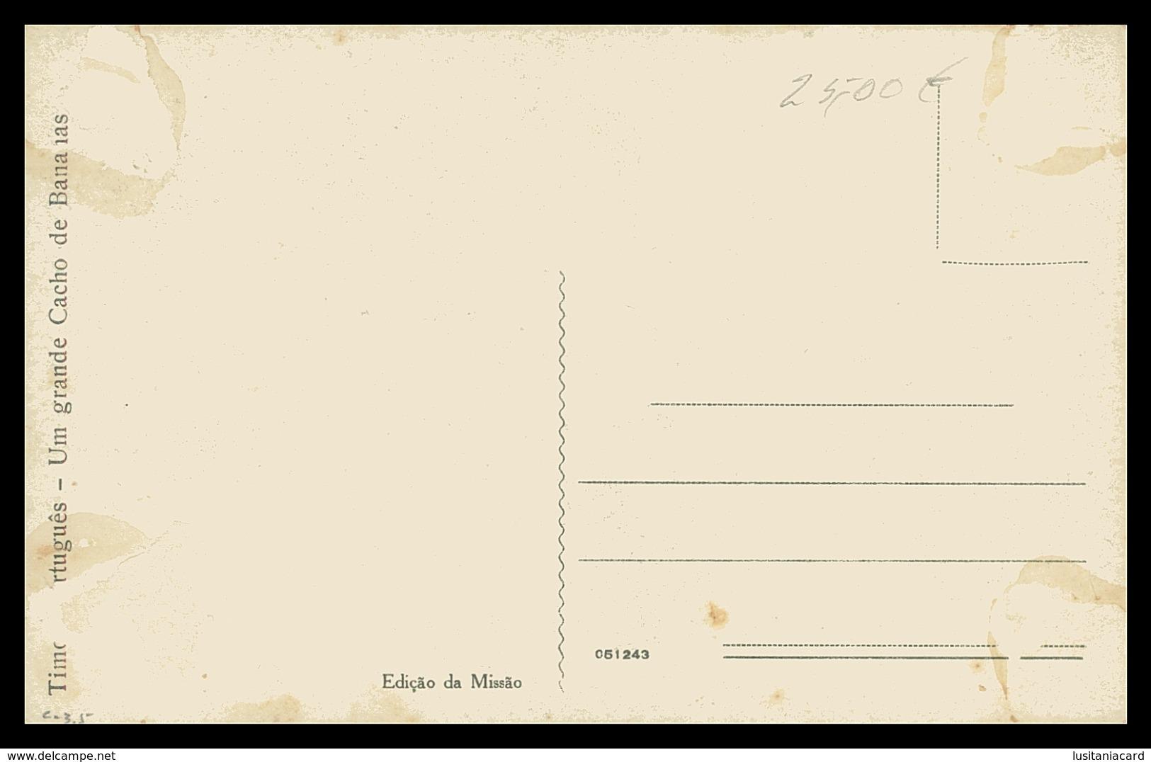 TIMOR - Um Grande Cacho De Bananas. ( Ed. Da Missão)    Carte Postale - Timor Oriental