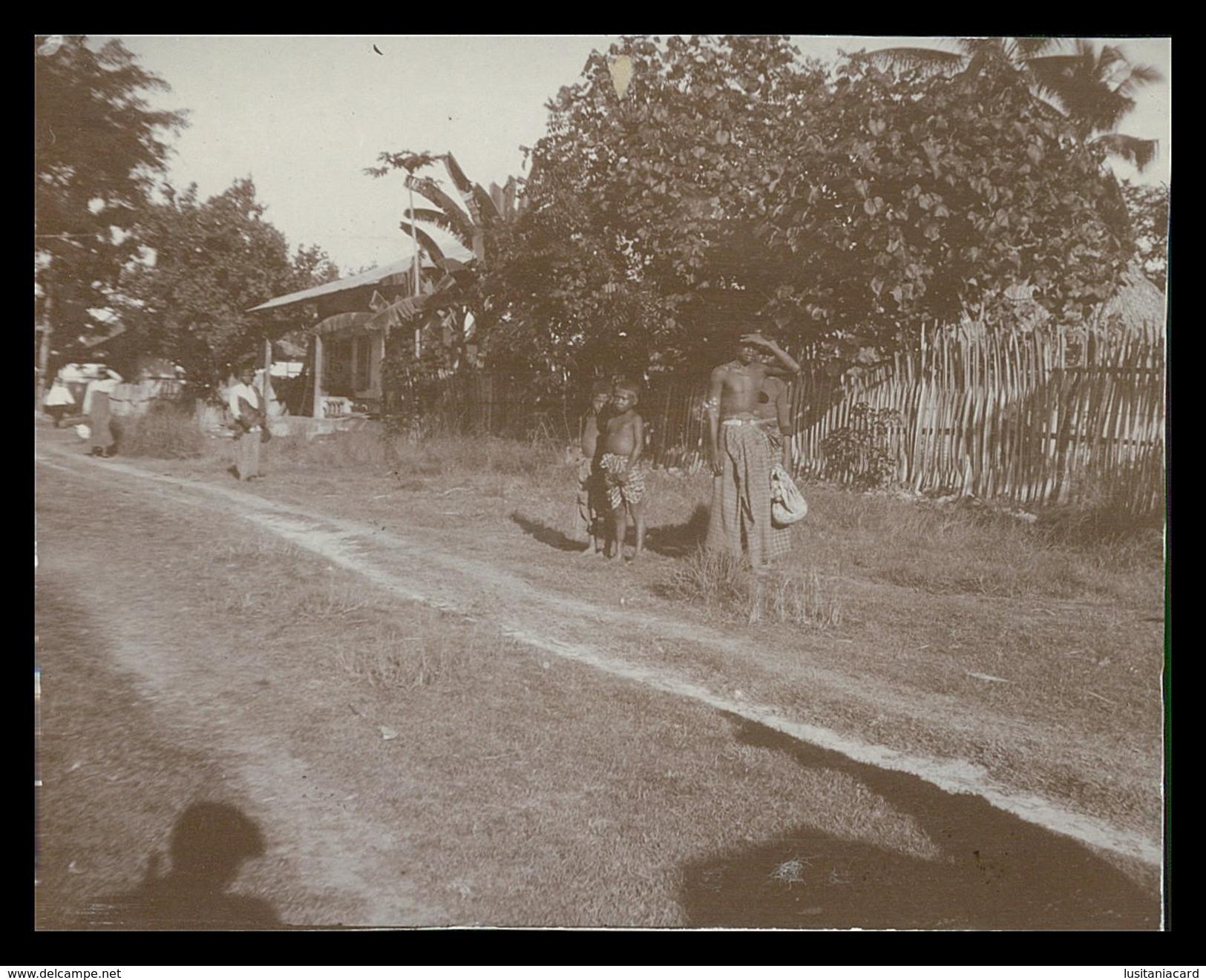 TIMOR - ( 8 FOTOS)  Photo - Timor Oriental
