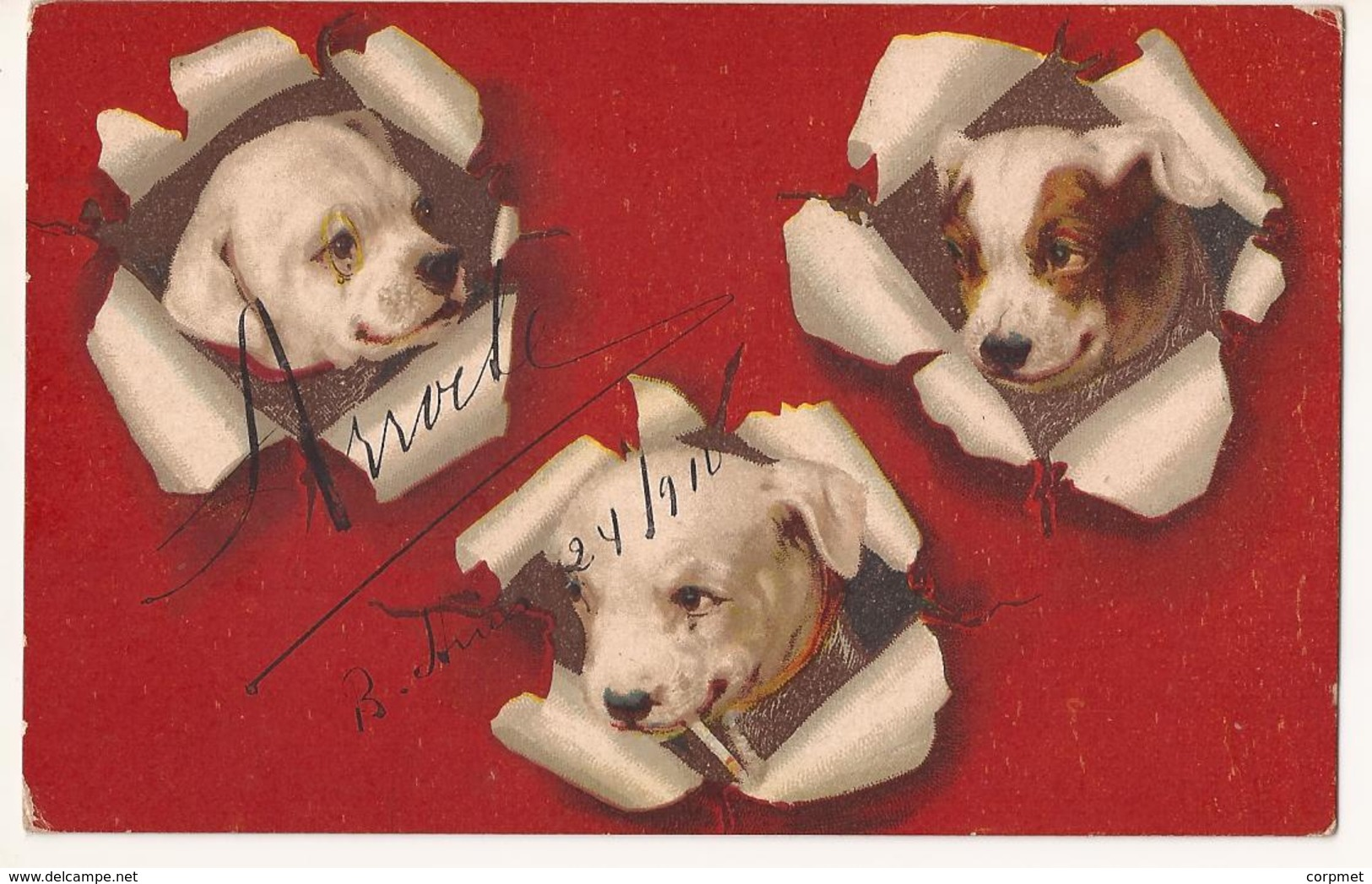DOGS - Vf POSTCARD Circulated In 1910 From ARGENTINA (with Advertisement From TIENDA SAN JUAN) To MONTEVIDEO - Ed. H&S - Hunde