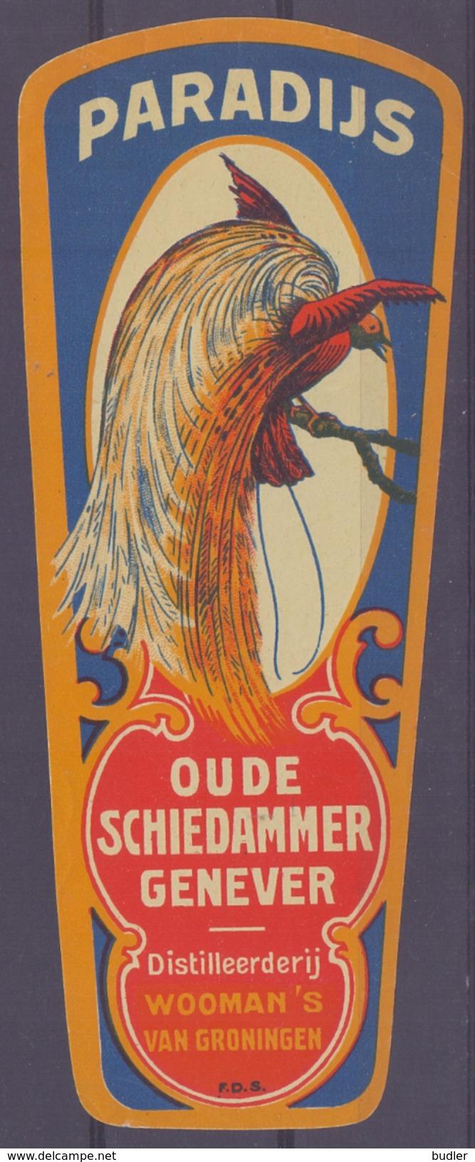 NEDERLAND : ## PARADIJS ## Oude Schiedamer Genever –  Distileerderij WOOMAN'S Van Groningen: PARADIJSVOGEL,APUS, - Labels