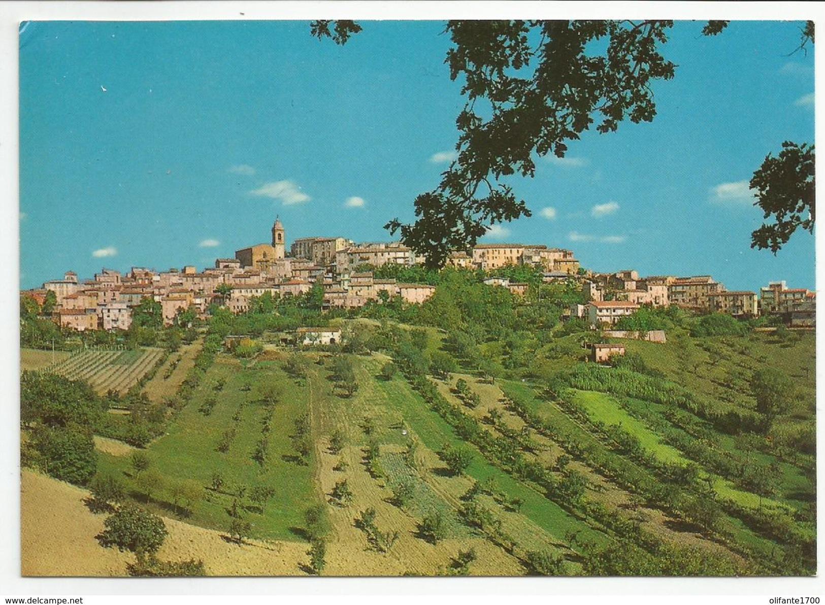 ASCOLI PICENO (031) - MONSAMPOLO DEL TRONTO Panorama - FG/Non Vg - Ascoli Piceno
